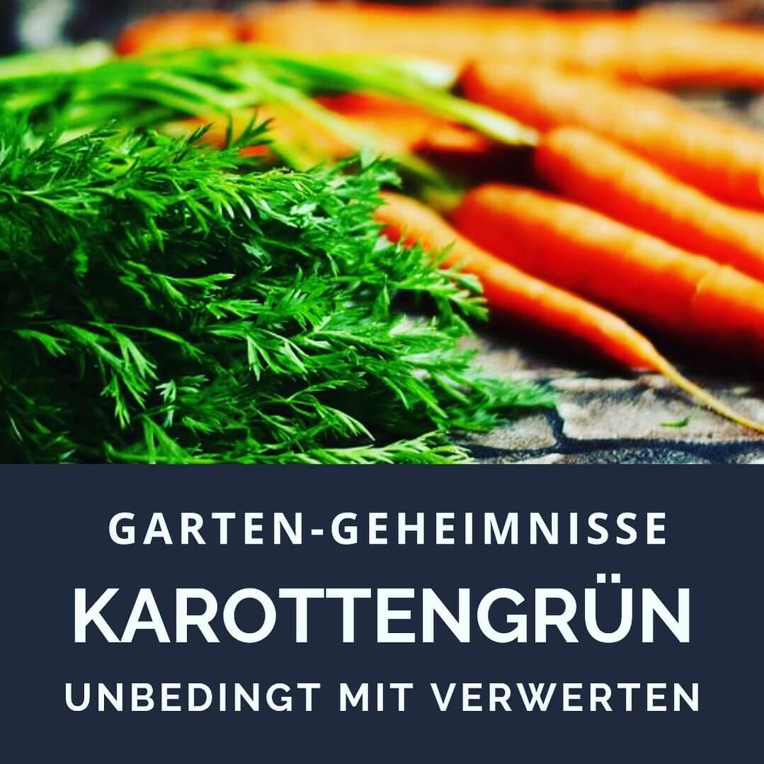 Karottenkraut verwenden