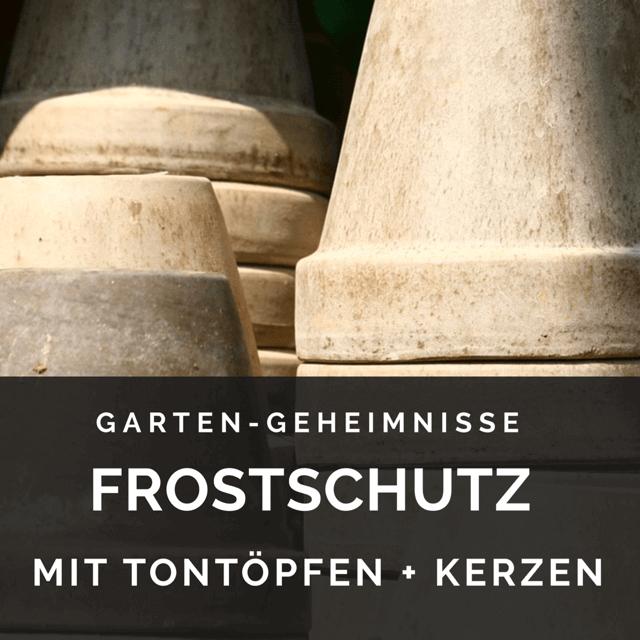 Frostschutz Gewächshaus